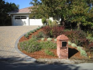 Albuquerque custom designed Xeriscape entryway