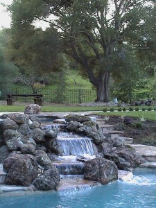 Albuquerque Landscape Architect designed pool and waterfall