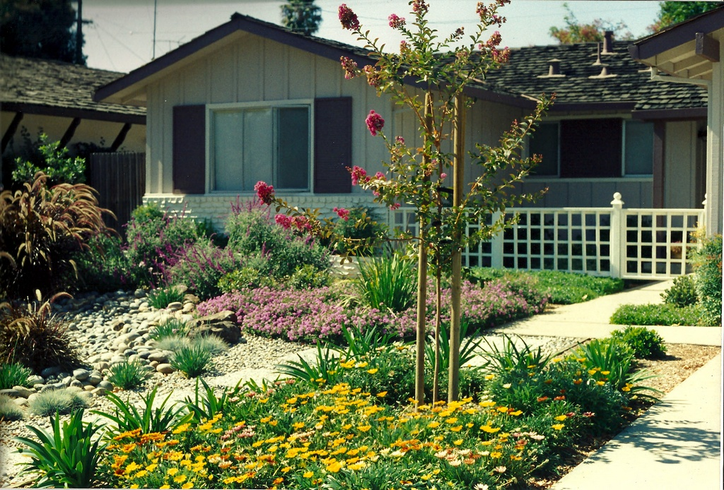 Front Yard Landscaping Low Water